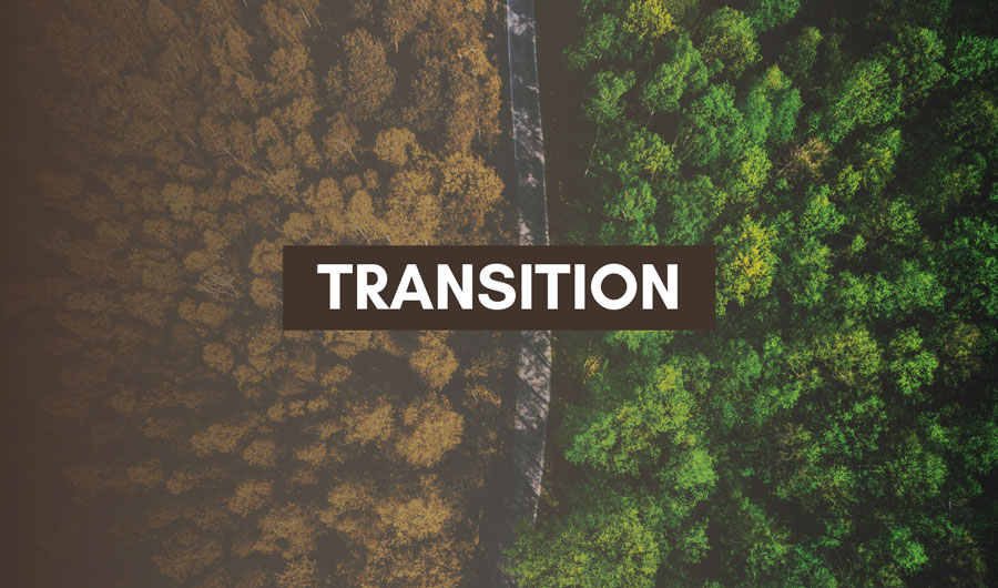 transition-family